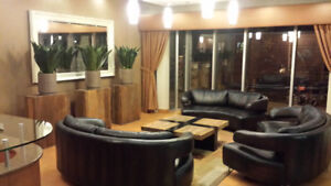 2 Bedroom (4.5) Apartment in the Heart of Downtown!