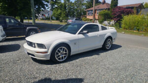 2009 Ford Mustang Coupe (2 door) $16,000 or OBO