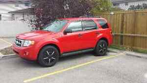 2009 Ford Escape XLT SUV, Crossover v6 4x4