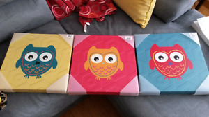 3 Owl pictures