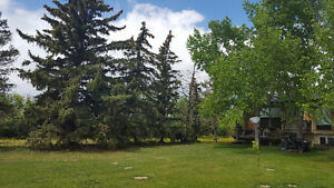 13 acres of land with house, Quonset, and barn for sale (acreage