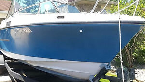 Silverline Boat 22' for sale with trailer