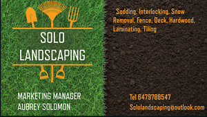 SOLO LANDSCAPING