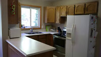 Oak Kitchen Cabinets, uppers/lowers, countertop, sink, faucet
