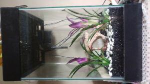 15 gallon column aquarium EUC