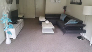 3 bed 2 bath Apartment Available June 2nd or July1st