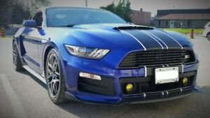 2015 Ford Mustang EcoBoost Coupe -ROUSH-