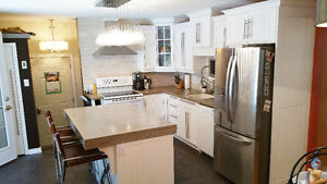 This entire kitchen is for sale for $4,000