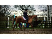 16.3hh for part loan.