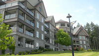 Beautiful Two Bedroom Condo at Bear Mountain Two Seperate Titles