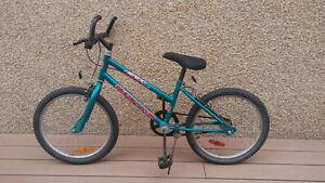 Boy's bike. Wheel size 20'