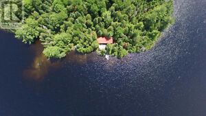Private island on mostly crown land lake Kawartha Lakes Peterborough Area image 6