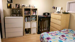 FEMALE STUDENTS/YOUNG PROS - ALL INCLUDED! Summer Sublet!