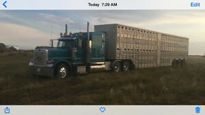 Cattle and bale hauling