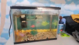 2 x starter tanks and fish