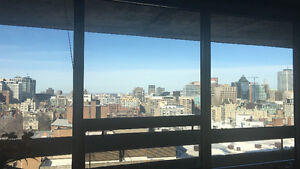 Luxury Furnished Downtown Apartment with Incredible City Views