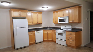 2 bedroom basement furnished suite