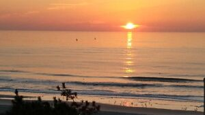 MYRTLE BEACH - May - June Special - please contact for more info