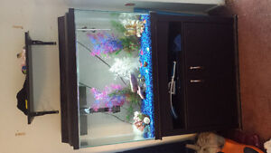 45 Gallon Fish Tank and Stand with Everything