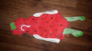 Carter's 6/9 Month New Never Worn Strawberry Costume $15 Firm.