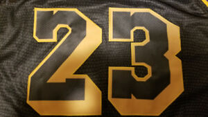 GREAT QUALITY NBA LAKERS LBJ JERSEYS STITCHED