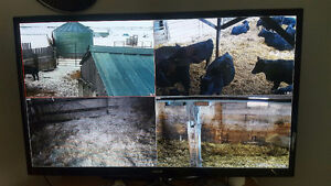 Cattle Camera System - INSTALLED - Powerful 30x Zoom