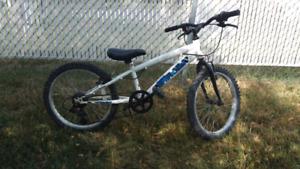 "20"" kids mountain bike"