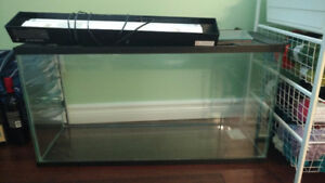 Fish Tank (35 galons) + Stand + Light + Pump + Accessories
