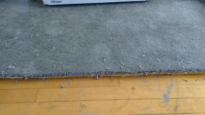 Gray stainmaster carpet with underlay