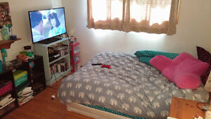 1 Bedroom in 5 bedroom clean student home, close to trent Peterborough Peterborough Area image 2