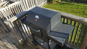Mint Stove Coal BBQ Kitchener / Waterloo Kitchener Area image 1