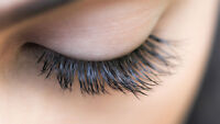 Eyelash Extensions - THANKSGIVING SPECIAL!