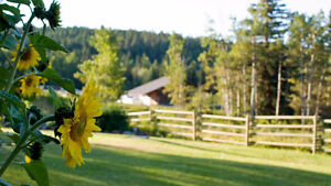 Affordable, Well Furnished Guest Rooms for Rent at Beautiful B&B Williams Lake Cariboo Area image 2