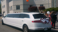 WEDDING LIMOUSINE AND LIMO