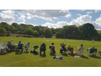 Cricket Club in South East London seeks senior and junior players. Dulwich/Forest Hill area