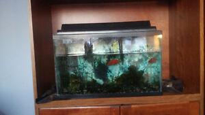 Aquarium 10 gallons
