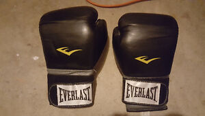 Mens Everlast Boxing Gloves