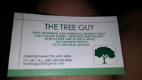 TREE GUY  Trimming and remival services. Gr. Hamilton