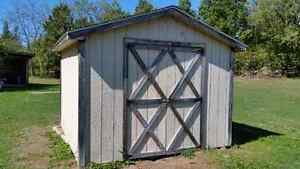 10 x 10  / Shed