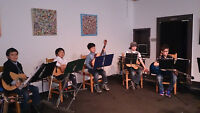 Bel Canto Strings Academy Group Music Programs