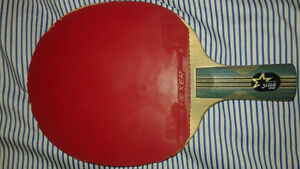 DHS Table Tennis Racquet