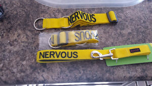 "Yellow leash ""nervous"""
