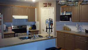 Looking for One Roommates for House Rental Douglas Dale