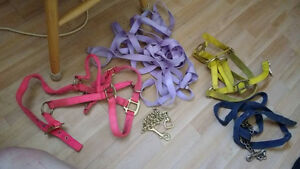Horse leads, saddle, reins, saddle pads 1 with bags