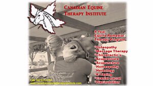 Canadian Equine Therapy Institute