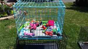 NICE BLUE PUPPY CRATE