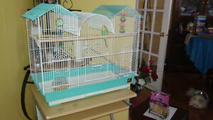 Parakeet and cage