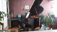 Piano lessons at For the Love of Music Piano Studio in St Thomas