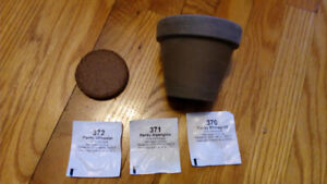 Free Pansy Grow Kit for Unwanted Orchid or Amaryllis bulb