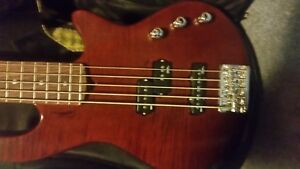 New Godin 5 string bass guitar Freeway 5